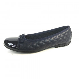 Cozy Navy Pat Paul Mayer Flat